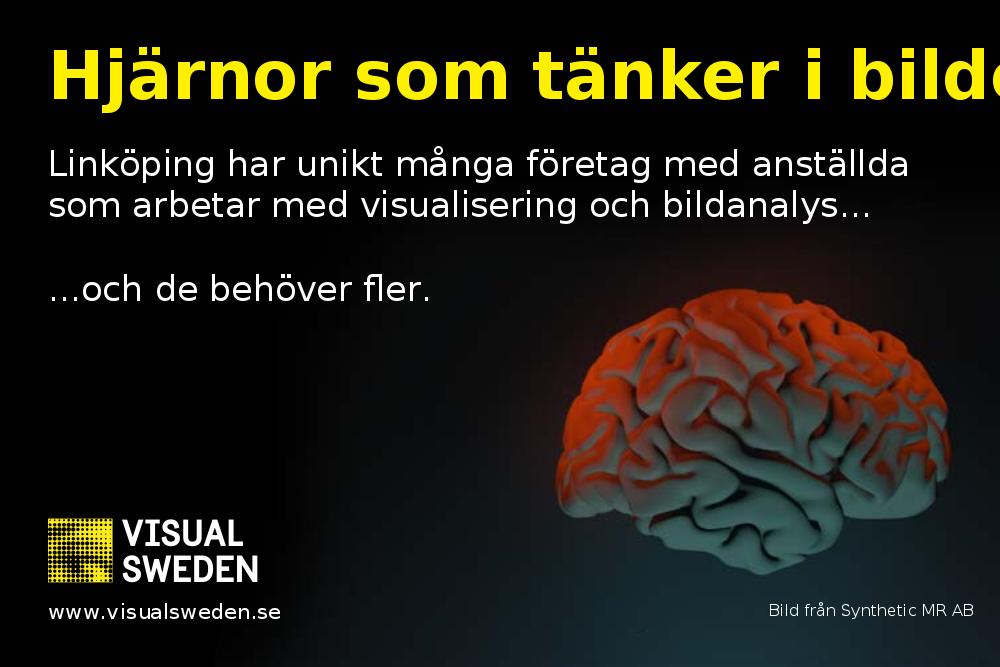 Visual sweden
